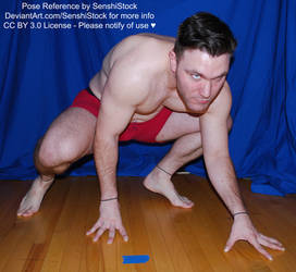 Dynamic Crawling Super Hero Male Pose Reference by SenshiStock