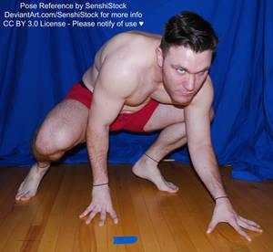 Dynamic Crawling Super Hero Male Pose Reference