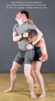 Two Guys Having a Wrastle Pose Reference