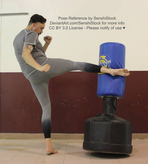 Kick Male Pose Reference Fighting