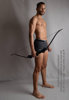 Prince Tico Archery Archer Bow Standing Pose Ref