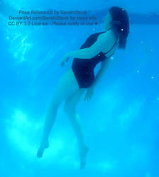 Graceful Dynamic Underwater Turning Pose Reference