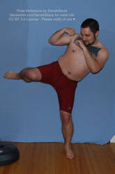 Tuxedo Dave Kick Kickboxing Fight Kicking Pose Ref by AdorkaStock