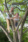 Two Models, One Tree by SenshiStock