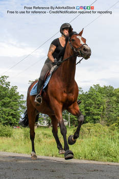 Horse Rider 3/4 Perspective Low Running