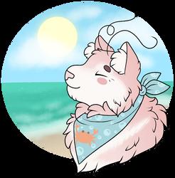 Sunny Seaside Day