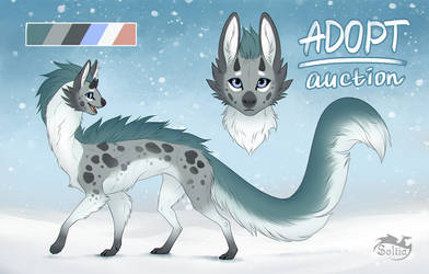 Adopt [CLOSED] Auction! by Soltia