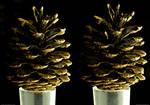Golden Cone - stereoscopic 3D