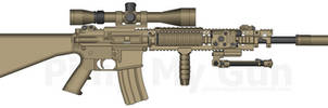 Marcus Luttrell's MK-12 inspired Rifle.