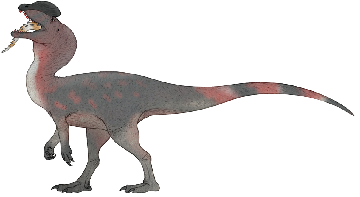 Dilophosaurus by Metratton