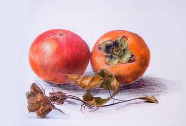 The Fruits - Color Pencil