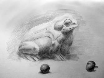 Still Life - Sketch