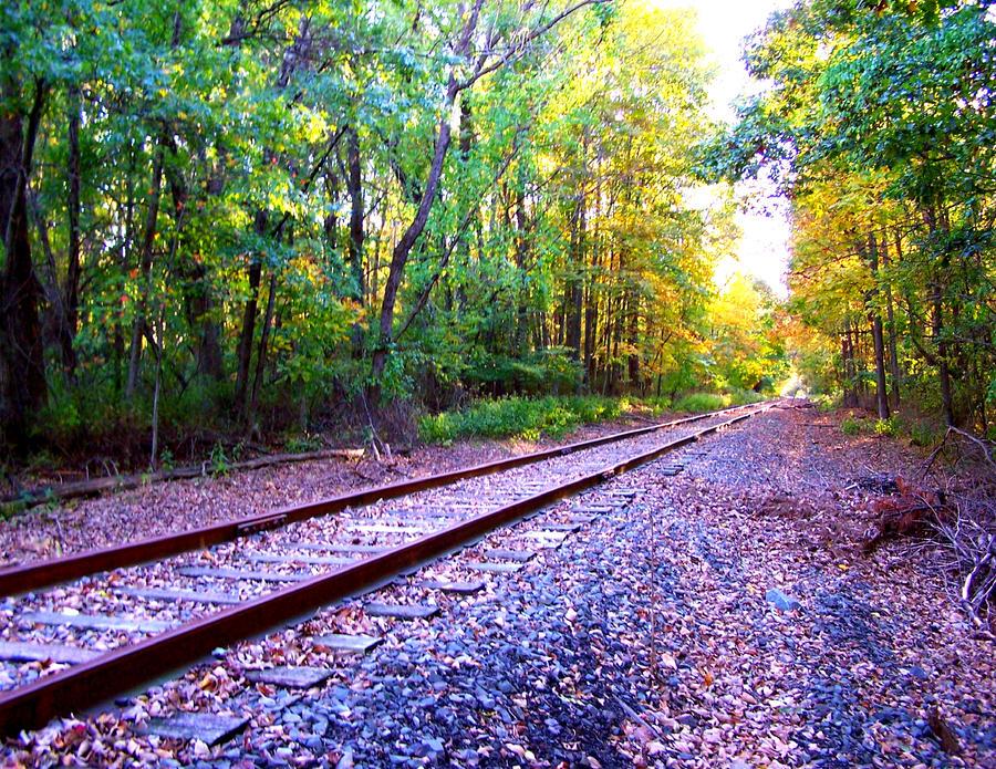 Train Tracks at Summer's End by weirdlynormal249