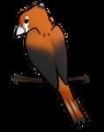 BLOO BIRD