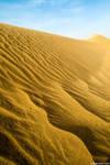 Desert XXI