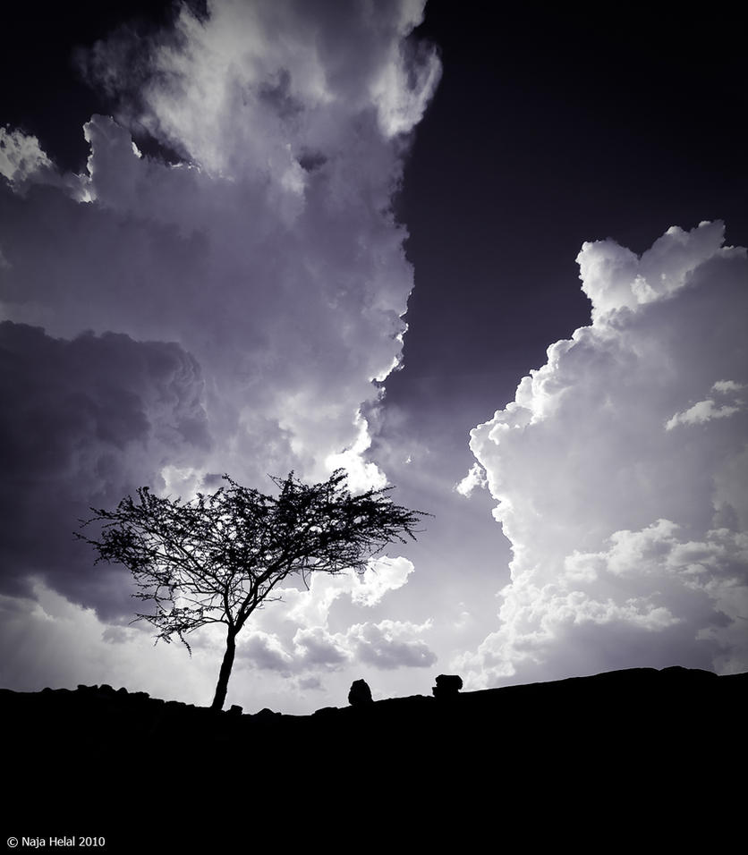 Tree hell by eyesweb1