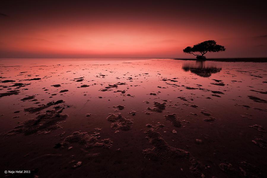 Bloody Sky by eyesweb1