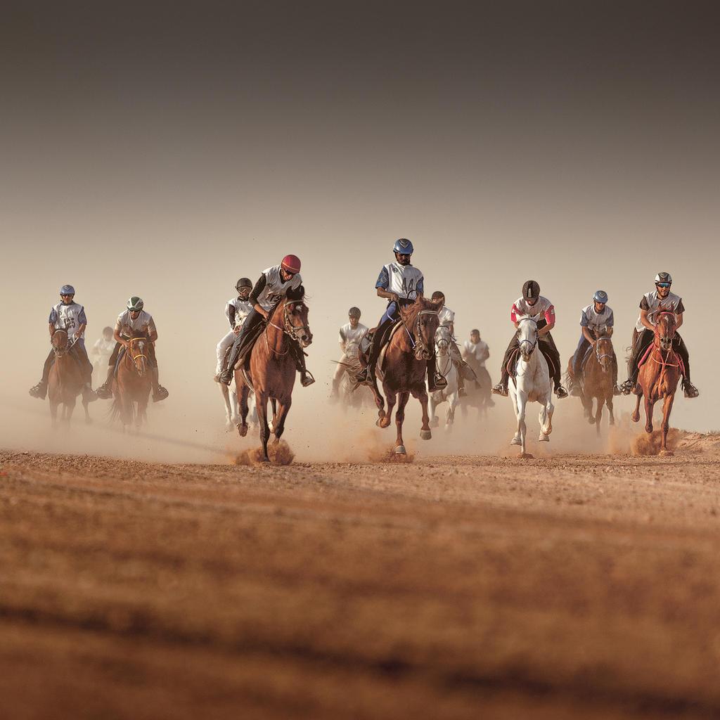 Horse Marathon II by eyesweb1