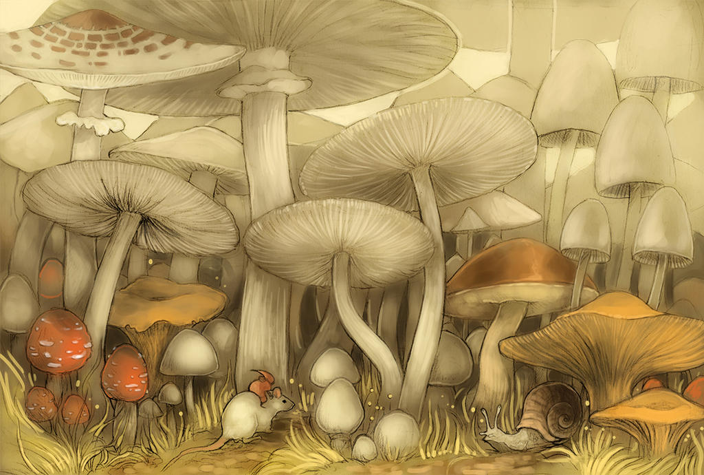 Mushroom forest by Yonetee