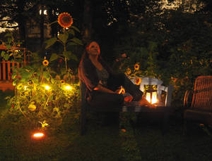 A Night With Sunflowers