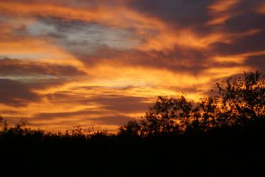 Sunset by lovlyninja39