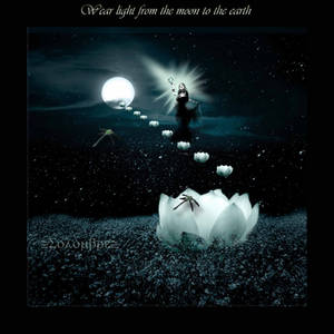 Wear the light from the moon