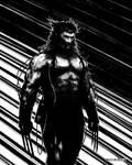 Weapon X / Wolverine