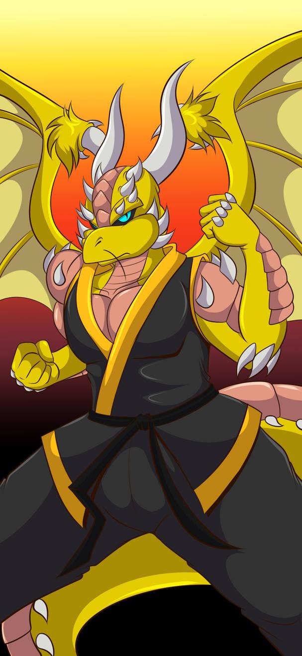 Sirdan - Ready to Fight