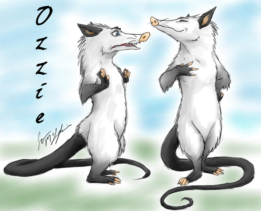 Over The Hedge Possum The Ozzman by peanutchan