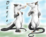 The Ozzman
