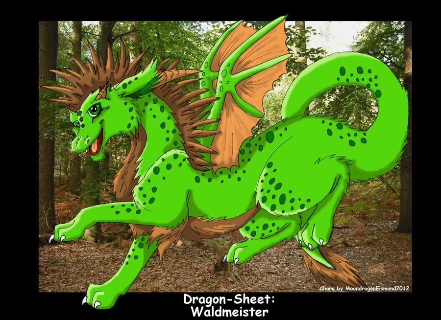 Dragon-Sheet: Waldmeister by MoondragonEismond