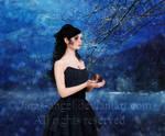 My Little Black Heart II