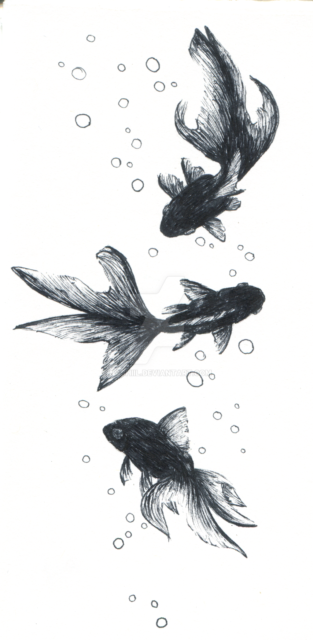 Pen fish sketch by nashiil on deviantart for Wyoming game and fish draw results