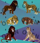 Lion adopts