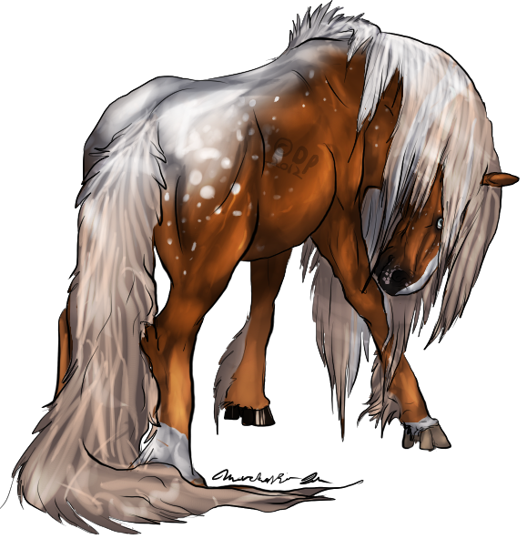 Dessert Appaloosa Mustang by Novie-Kenari
