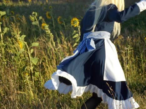 Belarus: In The Sunflower Fields.
