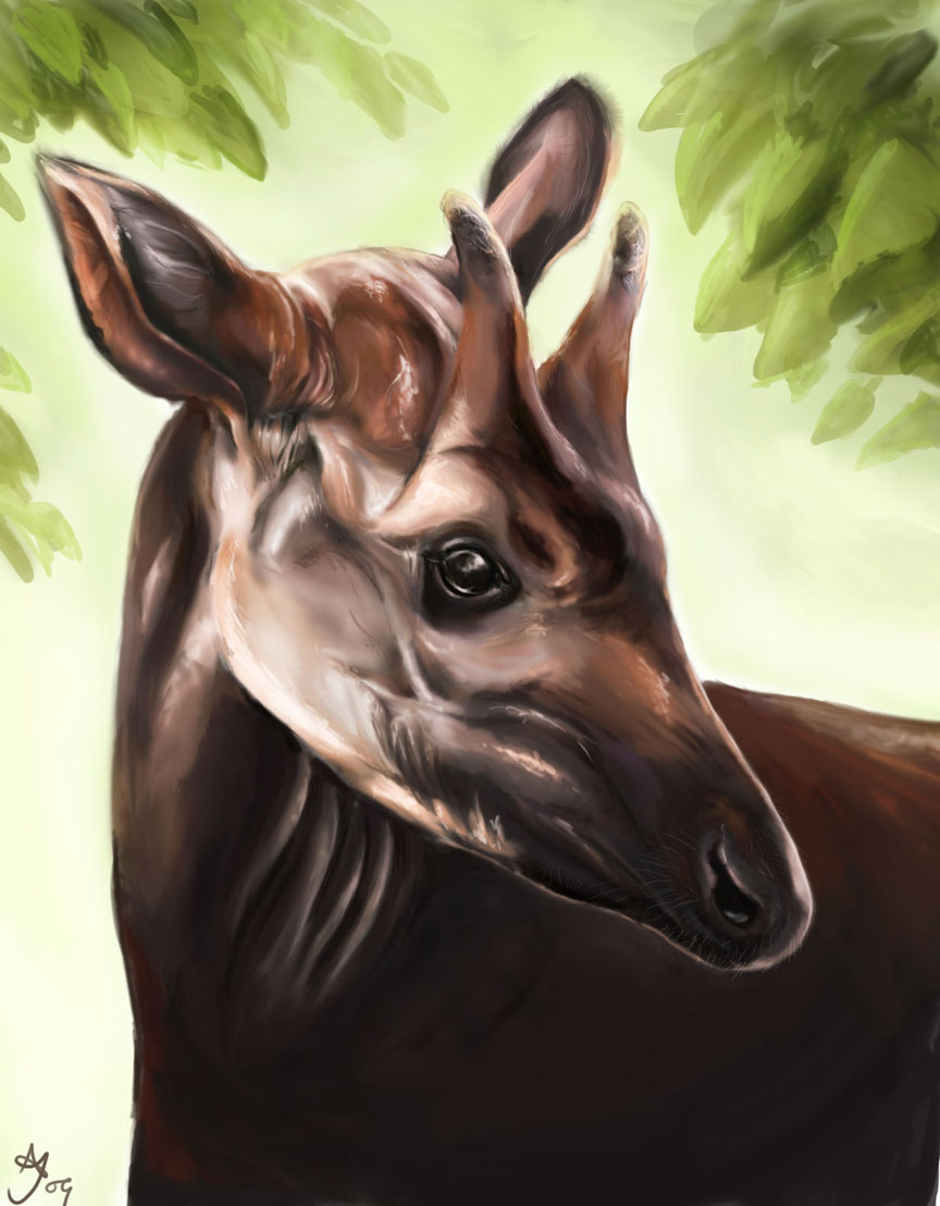Okapi by skullberries on deviantart for Okapi coloring page