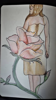 A Rose with no thornes