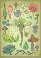 Botany (Silent Observers) by V-L-A-D-I-M-I-R