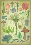 Botany (Silent Observers)