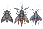 Hawk-moths