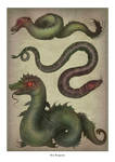 Sea Serpents