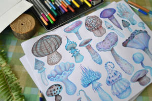 Mushrooms by V-L-A-D-I-M-I-R