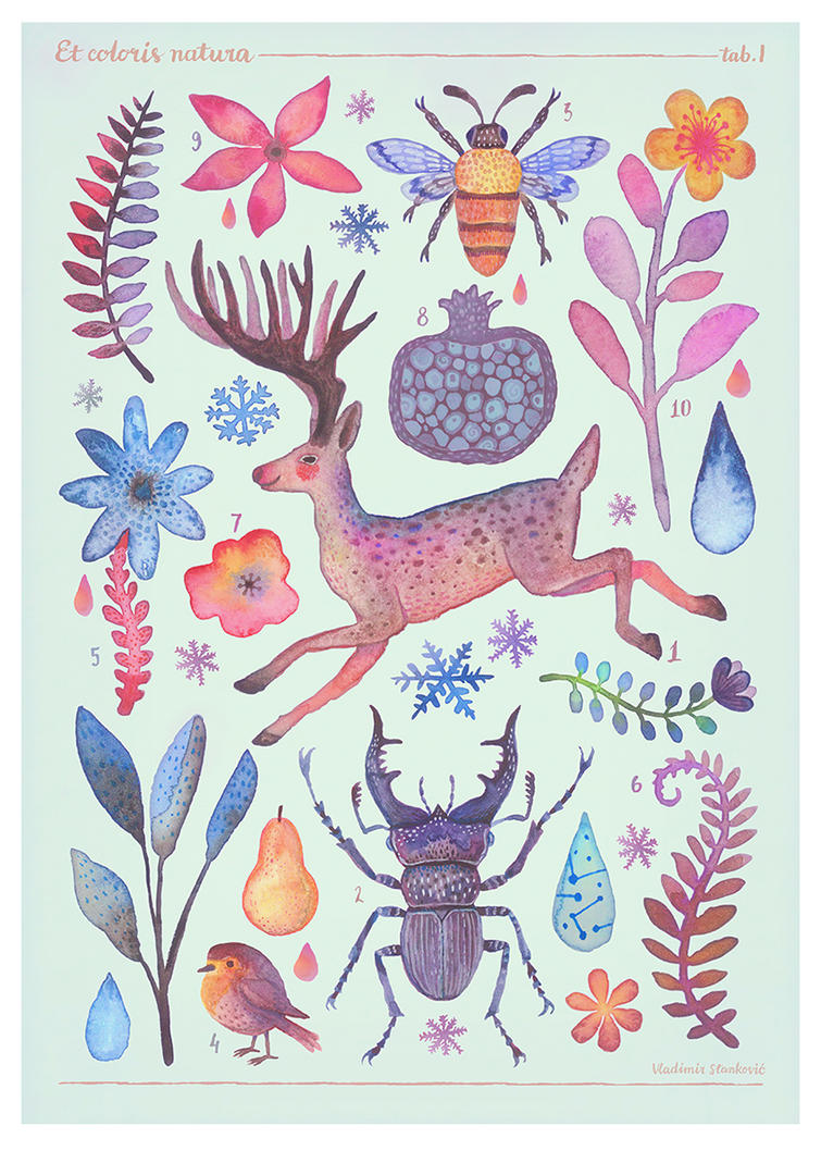 Et coloris natura I by V-L-A-D-I-M-I-R