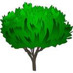 Illustrator Drawn Tree