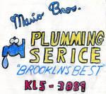 Mario Brothers Plumming