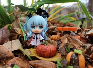 Noel's Fall Pumpkin Hunt