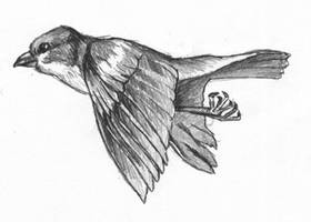 Bird by Sir-Cox-A-Blox