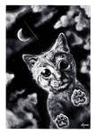 Cute Moon Kitty