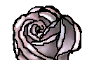 Rose by Russialover174